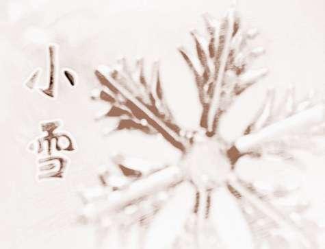 二十四节气小雪养生