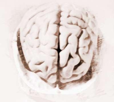 人类大脑十大未解之谜
