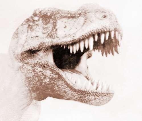 恐龙为什么会灭绝