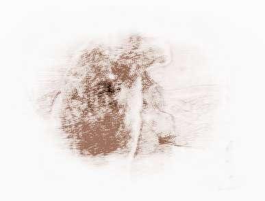 属兔狮子座2015年运势_祥安阁2015年运势双鱼座为什么和天秤座不配图片