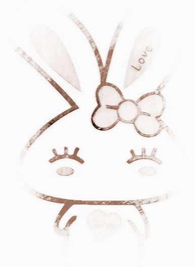 2016年属兔人的运程