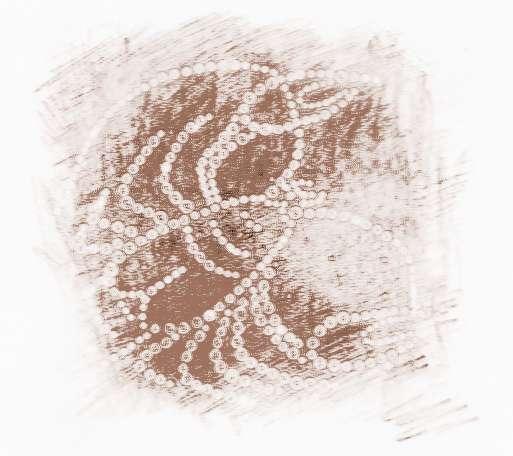 巨蟹座是在十二星座里面知道第四的,你排行2016年1月alex巨蟹座水瓶运势座星座女图片