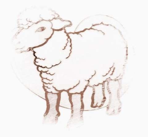 2017下半年白羊座的财运怎么办 2017下半年白羊座的财运怎么样