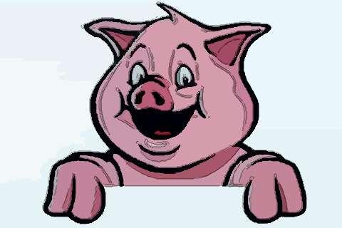 屬豬人2020年事業官運