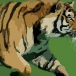 1986年属虎人2022年运势及运程 6岁属虎2022本命年每月运程详解