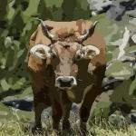1985年属牛人2022年运势及运程 37岁属牛2022年全年每月运程详解