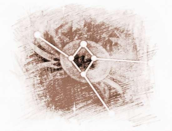 十二星座巨蟹座女|十二星座巨蟹座长相如何