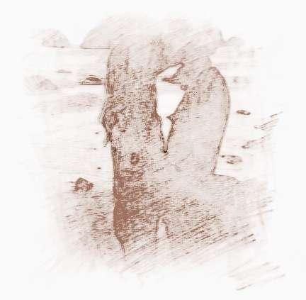 摩羯座性格和十二星座男人的配对天蝎座的男生是什么女生图片