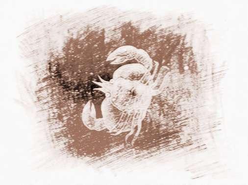qq头像星空巨蟹