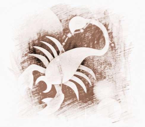 天蝎座适合星座双鱼座与天蝎座合得来吗图片