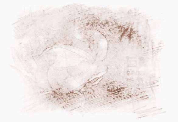 巨蟹男对待心爱的女人_星座时尚_祥安阁风水网图片