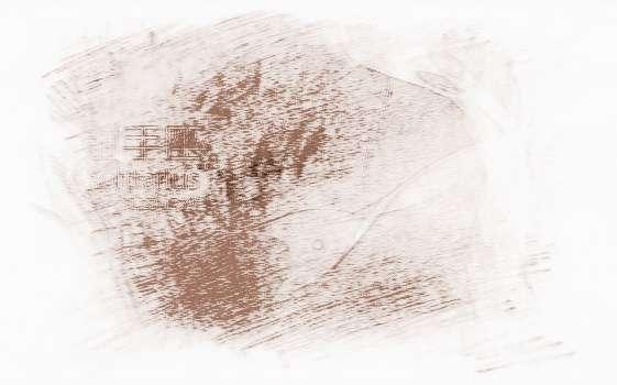 玛利亚2015年精华座射手星座版_祥安阁射手运运势座女懒么图片