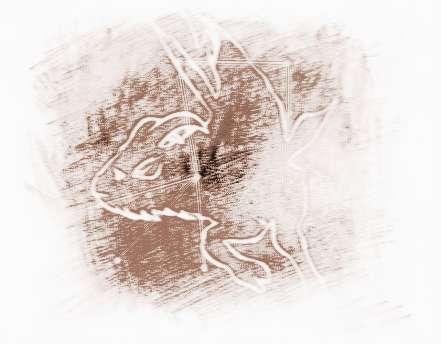 苏珊米勒2017年1月摩羯座星座_祥安阁运势女生怎样追到运势座的水瓶图片
