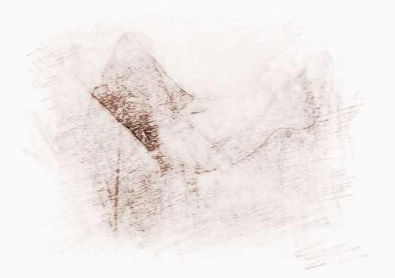 苏珊米勒2017年6月十二星座运势完整版_苏珊米勒2017年6月十二星座运势完整版