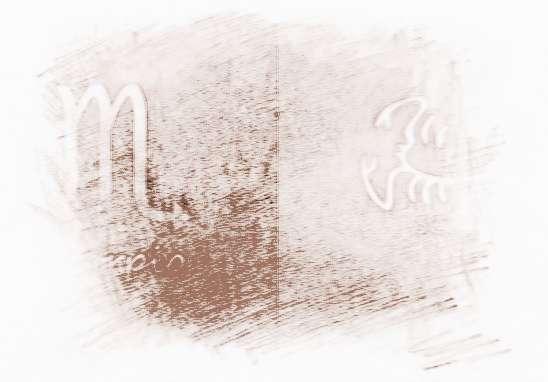 海百合化石_海百合2017年8月天蝎座运势