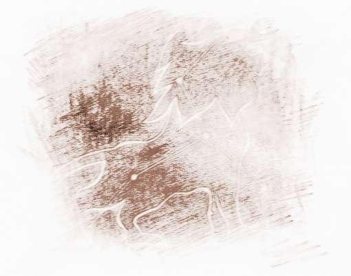 海百合化石_海百合2017年8月狮子座运势