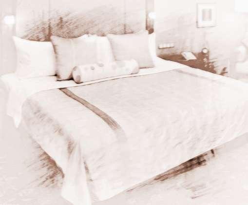 主卧的床得安康的,有风水罩