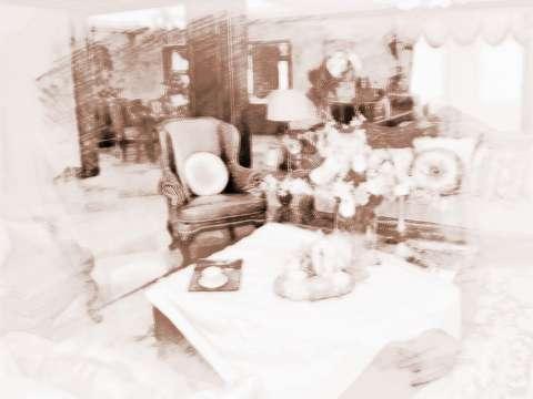 【家中鱼缸摆放风水】在家中摆放风水艺术品需要注意什么?