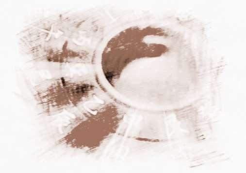 【李居明2019年生肖运势完整版】李居明 九星风水学的基础知识