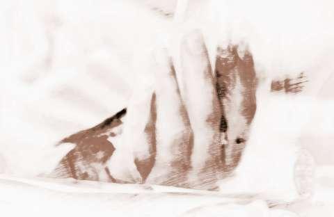 梦见蛇咬后背_梦见蛇咬自己手指