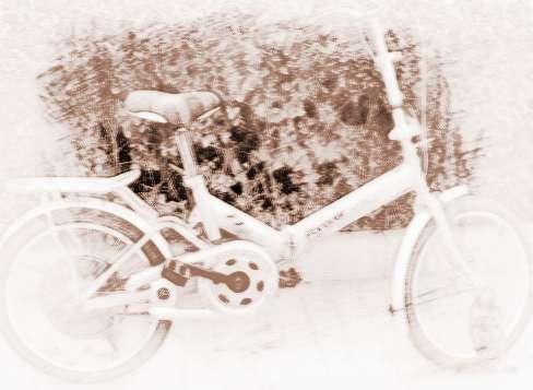梦见丢自行车