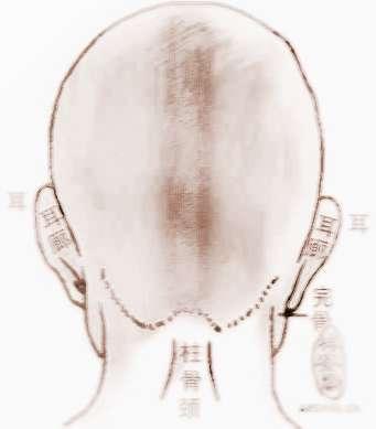 骨相学-气悬针骨