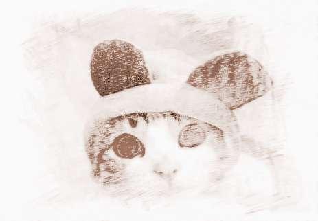 可爱宠物风景 壁纸