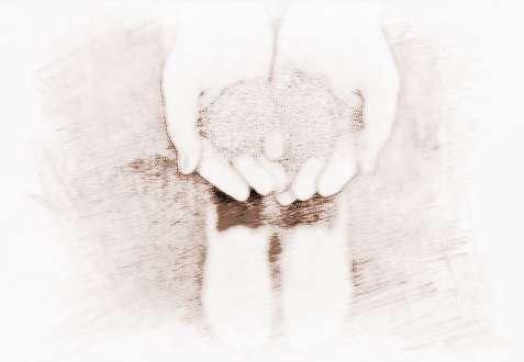 qq大全女生女生a大全_祥安阁qq名白色短裤名字图片图片