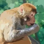 分析属猴几月命苦