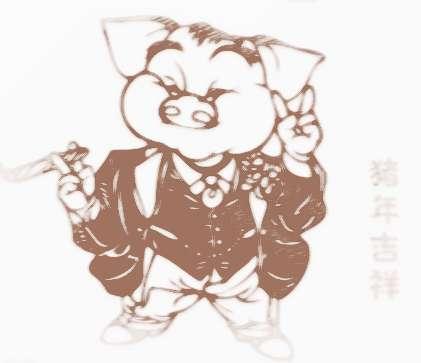 [2017年属猪人的运程每月运势]2017年属猪人的运程及命盘走向