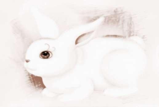 屬兔人2018年運勢及運程 2018年屬兔人的全年運勢