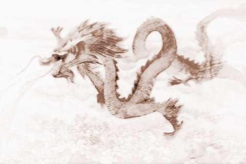 [木龙根]木龙的人运气运势和性格