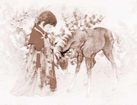 1954年属马的今年多大2017