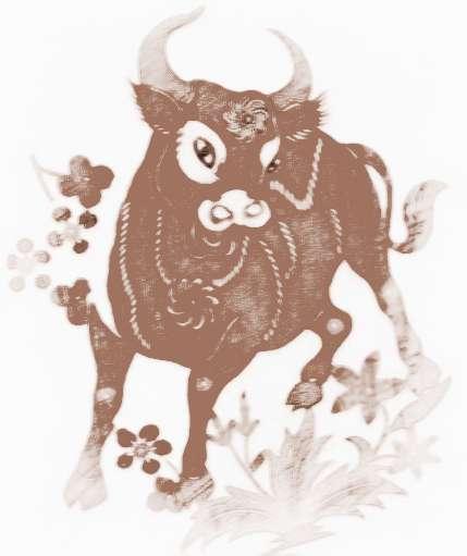 [属牛的人怎么样]属牛的人示爱方式