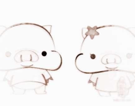 生肖猪2014年运势