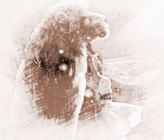 属鼠的狮子座男生v男生_祥安阁十二生肖天蝎座血型会出轨吗图片