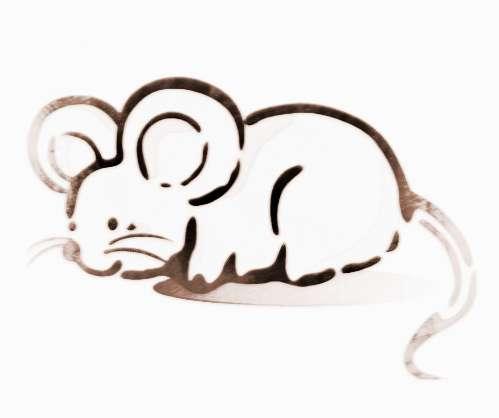 猪和老鼠的可爱图片