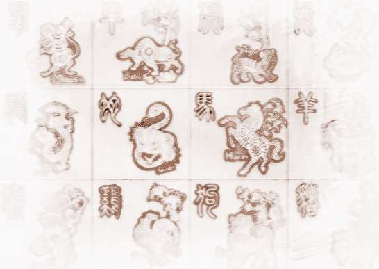怎样根据染色体形态判断_怎样根据年份确定生肖