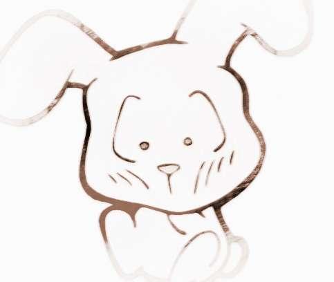 生肖兔的性格与特点