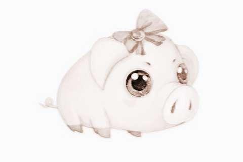 属龙的幸运数字和颜色2019年_生肖猪2019年幸运数字和颜色