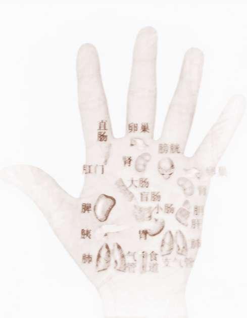 [手相能看出身体状况吗]如何从手相看出肾亏