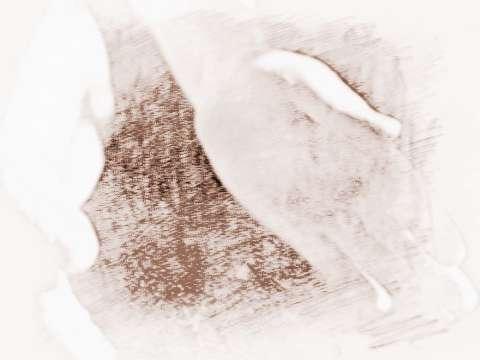 【手相如何看】如何从手相中看婚姻缘分呢