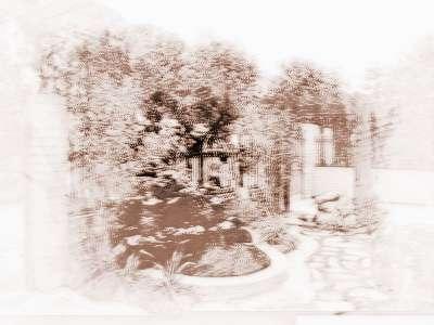 别墅院子风水知识   1,别墅庭院内不可种植有刺的花或仙人掌,生