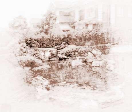 别墅前后花园养鱼风水