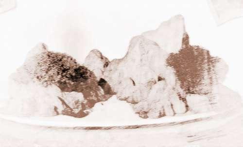 哪种类型的假山盆景能够催旺财运?
