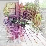 庭院龙8国际官方网站植物