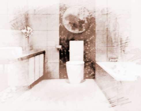 家居风水厕所植物摆放