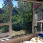 从窗户能看到这些东西 对家运不利
