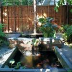 院里有池塘风水 庭院池塘风水布局