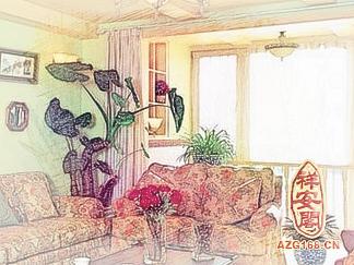 客厅风水花草